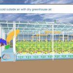 بررسی نوآوری شرکت prinsgroup درزمینهی تهویه و خنک کردن گلخانه