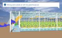 خنک کردن گلخانه